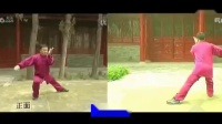 陈式太极拳老架一路  正面  背面合一  张东武老师演示_高清
