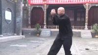 戴氏心意拳完整体系演练合集-陈晋福