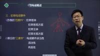 2020刑法核心考点-3、犯罪构成要件-刘刚【希律法考】