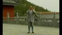 03.少林小洪拳(上)《释德扬》《少林传统功夫老架捶谱》