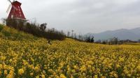 汉中黄塘风景区 值得一去的地方