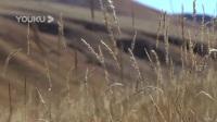 我在会盟:目的地为河西走廊重镇凉州截了一段小视频