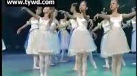 韦佳杏等芭蕾舞《春的旋律》