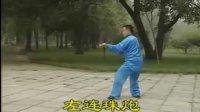 陈式太极拳竞赛套路_武冬示范讲解11