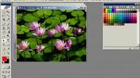 Photoshop从头学起第03集