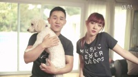 Perfect - One Direction cover by Jannine Weigel ft. Jason Chen