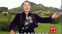 河南坠子 王莽赶刘秀(莫红梅)10