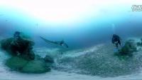 youTube晚间直播 印尼瓦伦岛珊瑚礁潜水 VR体验 360度全景3D Virtual Reality虚拟现实视频 VR Experience虚拟场景
