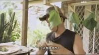 桑树的用途-马来西亚王涛和他的桑树(上集)