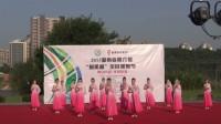 2015舞动中国 —排舞联赛(湖南赛区):株洲风景线艺术团《蝶舞飞花》