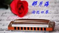 口琴曲 那片海 Bb调口琴 简谱字幕 询忧口琴