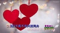 美好的守候(KTV伴唱版)- 望海高歌
