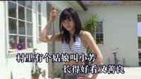 HD《小芳》李春波-经典老歌