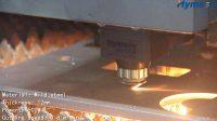 1500W 12mm MS LASER CUT!Hymson Laser