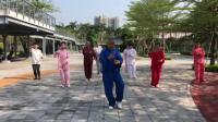 传统杨氏太极拳85第28-46晨练20190511