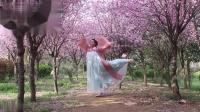 唯美的古风舞蹈❤赠六兽妖伊奥*