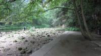 张家界的小溪02