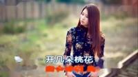 一念天涯(KTV伴唱版)- 云菲菲