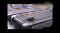 100倍速逆天了!把小乌龟放在跑步机上_高清