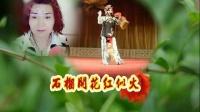 学唱柳琴戏【喝面叶】石榴开花红似火