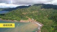 陨落天堂:中国可以如何帮助所罗门群岛保护雨林