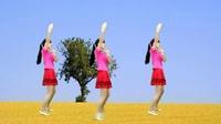 DJ版广场舞《缘分来了就是你》入门32步,歌美舞美人更美!