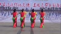 -巨鹿霞光广场舞蹈队《九九欢歌》比赛获奖