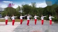 飘雪广场舞《起风的夜里》原创抒情形体舞正面教学