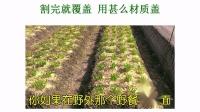 02自然农法研习营 许素桂主讲