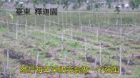 03自然农法研习班 罗杰老师 主讲