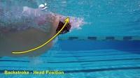 仰泳-改善仰泳头部位置的固定分析