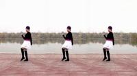 麒麟广场舞《女人漂亮不是罪》演示和分解动作教学 编舞麒麟
