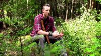 预算小木屋Log Cabin on a Budget- Ep 6- Homemade Tree Puller