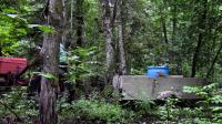 预算小木屋Log Cabin on a Budget- Ep 7- Moving Boulders