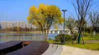 仙林湖公园