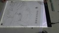 凌达教您画工笔画-出水芙蓉图001