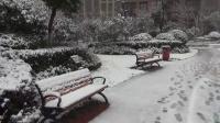 新年第一场雪
