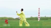 杨式太极拳85式--杨大卫老师演练