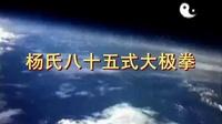 杨氏85式太极拳全套演练(付清泉)