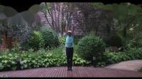 梦之队快乐之舞第十四套健身操第二节上肢运动