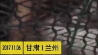 漠羽系列特别专辑 39 爱心志愿抢救