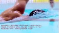 [自由泳]自由泳呼吸