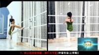舞蹈教师标准基本功新版少儿舞蹈基础教材之把上耗控前旁腿演示