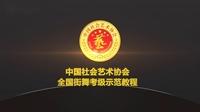 中国社会艺术协会全国街舞考级(street jazz)6级