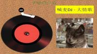喊麦DJ - 大情歌