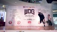 半决赛平凡 VS 小叶-WDG天津分赛区-Breaking