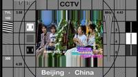 cctv10 测试卡 20110210 051500
