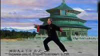 李德印四十二式太极剑竞赛套路上05(刘志华演练示范-李德印示范及讲解)