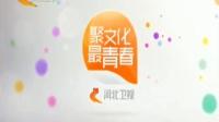 河北卫视台呼(完整高清版)_标清版(10s)