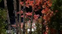 Осенний вальс(秋天华尔兹) - Gelena